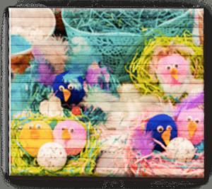 Гнездышки с птенцами